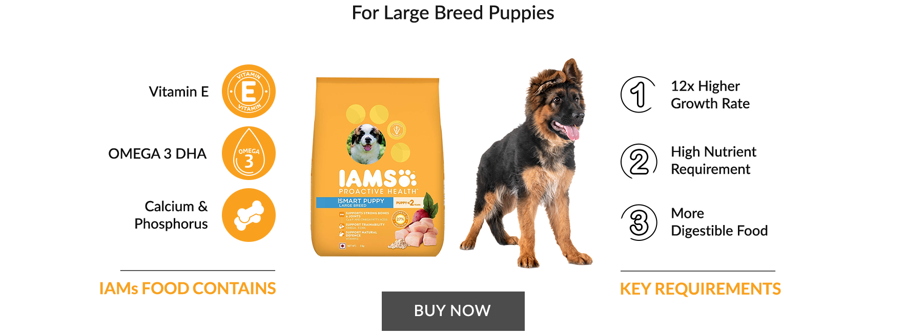For Large breed puppies