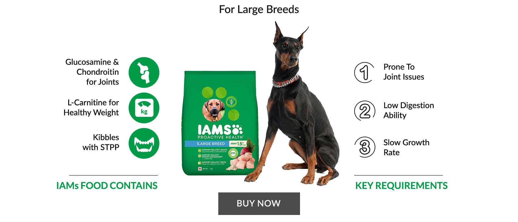 For Large breeds